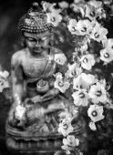 buddha-2507283_1920